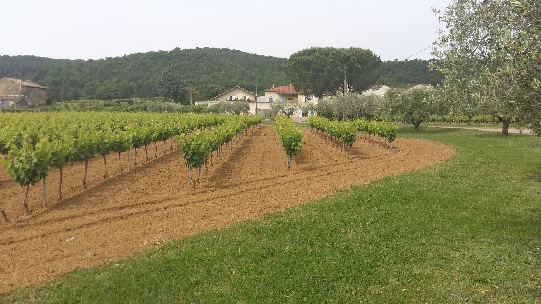 Domaine De Laplagnol vins Côtes du rhône dans le Gard (30)